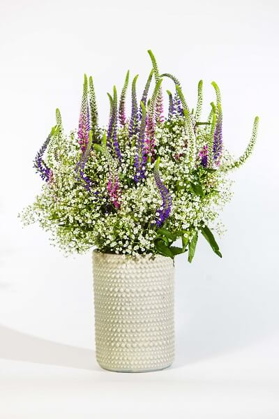 latest floral design trends